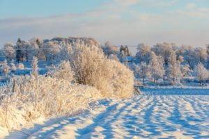 Zima wprzyrodzie aproblemy wbiznesie - kiedy kolejność jest ważna